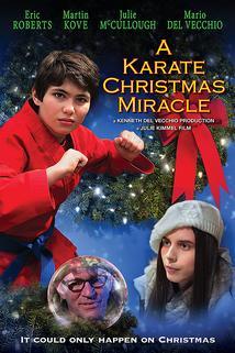 Karate Christmas Miracle, A