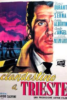 Clandestino a Trieste