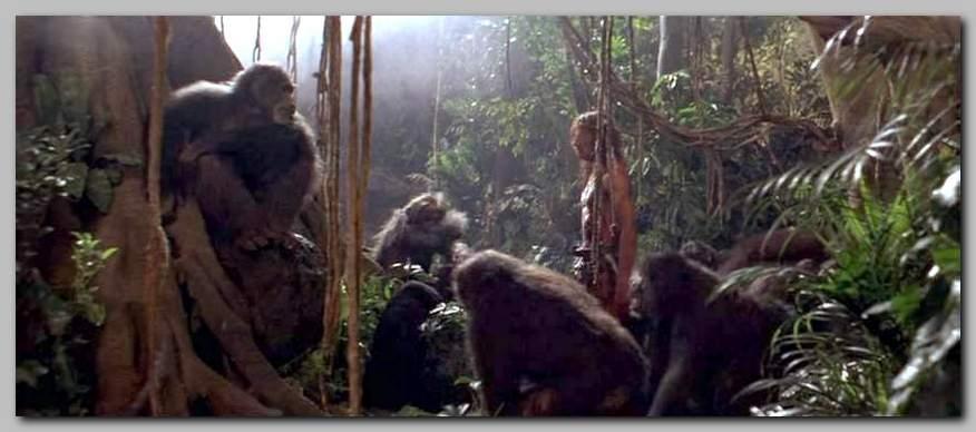 Příběh Tarzana, pána opic