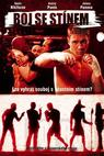 Boj se stínem (2005)