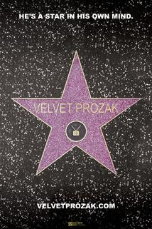 The Adventures of Velvet Prozak - Spun