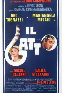 Gatto, Il