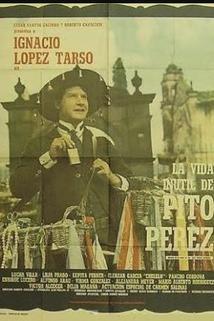 Vida inútil de Pito Pérez, La