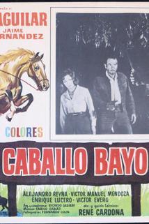 Caballo Bayo, El