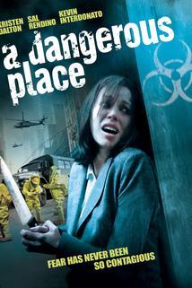 Dangerous Place, A