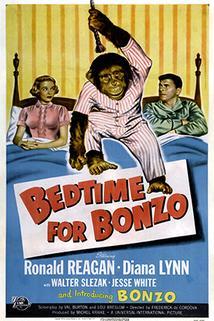 Bedtime for Bonzo  - Bedtime for Bonzo