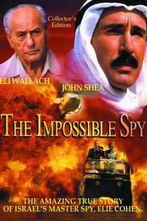 The Impossible Spy