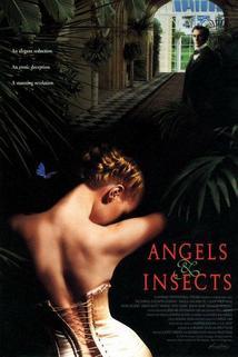 Andělé a hmyz