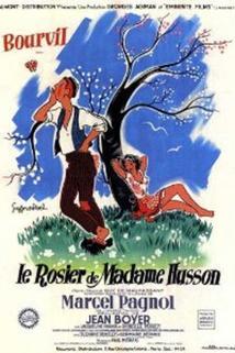 Rosier de Madame Husson, Le