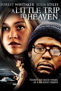 Malý výlet do nebe  - Little Trip to Heaven, A