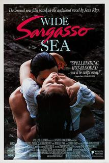 Širé Sargasové moře