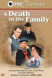 Smrt v rodině