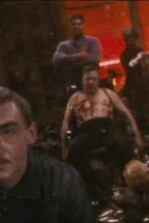 Fassbinder, Berlin Alexanderplatz, 14 - Mein Traum vom Traum des Franz Biberkopf von Alfred Döblin: Ein Epilog