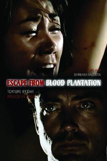Insel der blutigen Plantage, Die