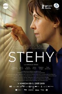 Stehy