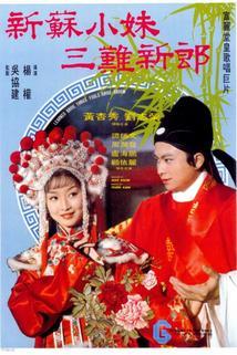 Xin Su xiao mei san nan xin lang