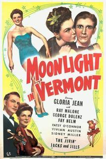 Moonlight in Vermont  - Moonlight in Vermont