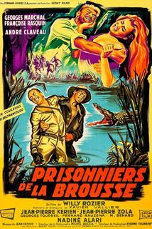 Prisonniers de la brousse
