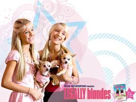 Pravá blondýnka 3