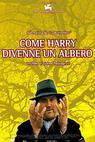 Jak se Harry stal stromem (2001)