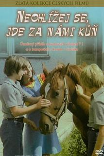 Neohlížej se, jde za námi kůň!