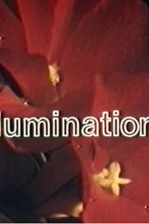 Illuminations  - Illuminations