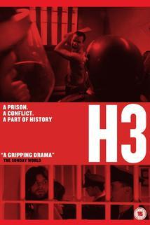 H3  - H3