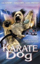 Karate Dog  - The Karate Dog