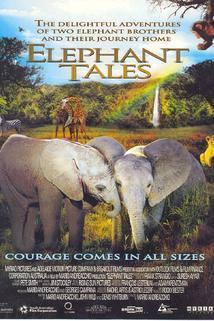 Sloní putování