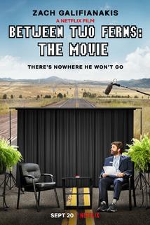 V kapradí: Film