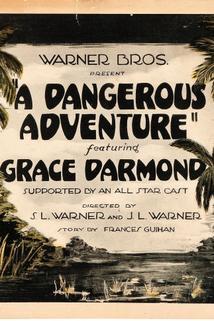 A Dangerous Adventure  - A Dangerous Adventure