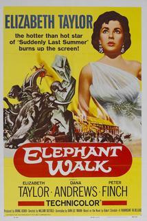 Sloní stezka