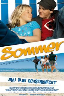 Léto  - Sommer