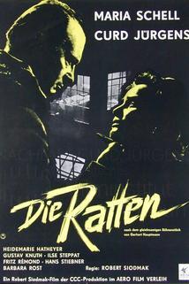 Ratten, Die  - Ratten, Die