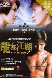 Long zai jiang hu
