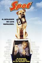 Plakát k filmu: Flek