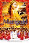 Marigold (2007)