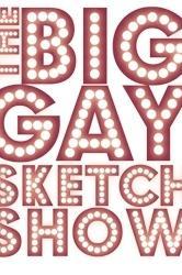 The Big Gay Sketch Show  - The Big Gay Sketch Show