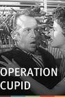 Operation Cupid