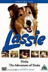 Lassie a Neeka
