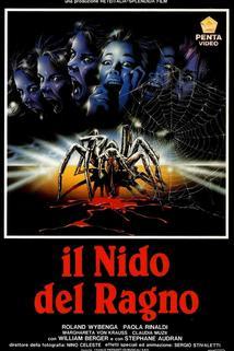 Nido del ragno, Il