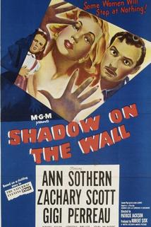 Shadow on the Wall  - Shadow on the Wall