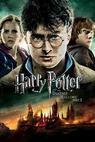 Harry Potter a Relikvie smrti: část 2 (2011)
