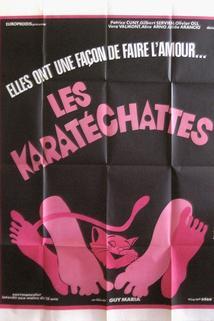 Karatéchattes, Les