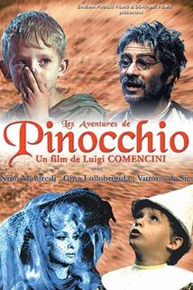 Panáček ze dřeva  - Avventure di Pinocchio, Le