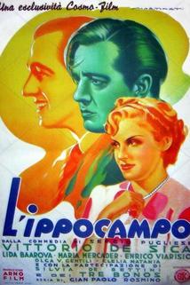 Ippocampo, L'