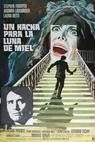 Rosso segno della follia, Il (1970)
