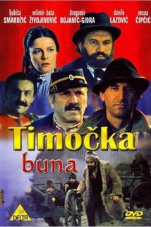Timocka buna