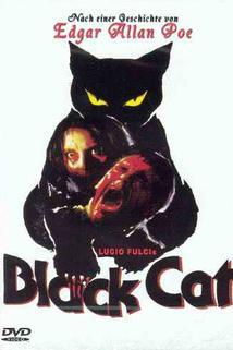 Černý kocour