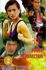 Hubungan jenayah (1995)